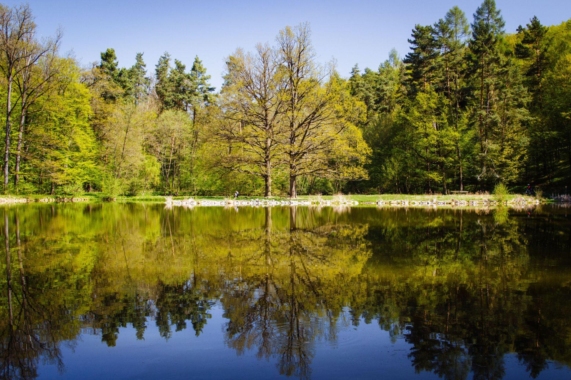 brnenske-primestske-lesy-lakaji-k-vyletum